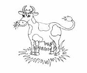 Free coloring and drawings Grazing cow Coloring page