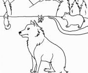 Free coloring and drawings Coyotes and Bears Coloring page