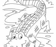 Coloring pages Crocodile 17