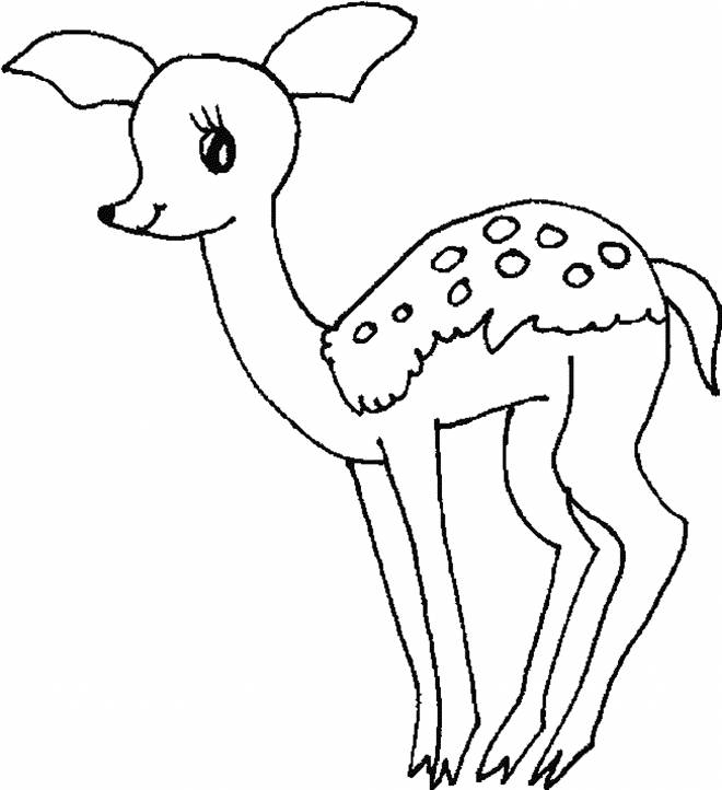 Free coloring and drawings A beautiful Chevrette Coloring page