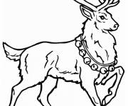 Free coloring and drawings Christmas deer Coloring page