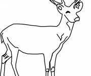 Free coloring and drawings Smiling deer Coloring page