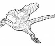 Coloring pages Flying dinosaur to color