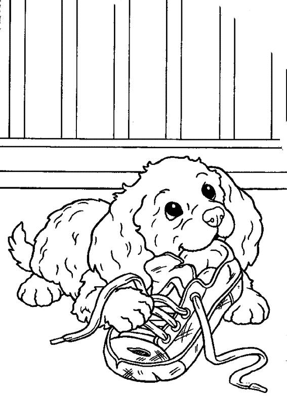 Free coloring and drawings Dog and shoe Coloring page