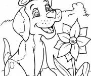 Free coloring and drawings Dog in nature Coloring page