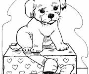 Free coloring and drawings Dog on a gift Coloring page