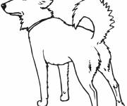 Free coloring and drawings Watch dog Coloring page
