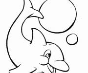 Coloring pages Dolphin playing