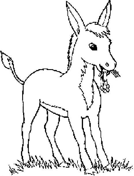 Free coloring and drawings A little donkey carries a flower Coloring page