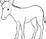 Free coloring and drawings Donkey drawing Coloring page