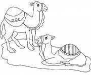 Coloring pages The rest of the camels