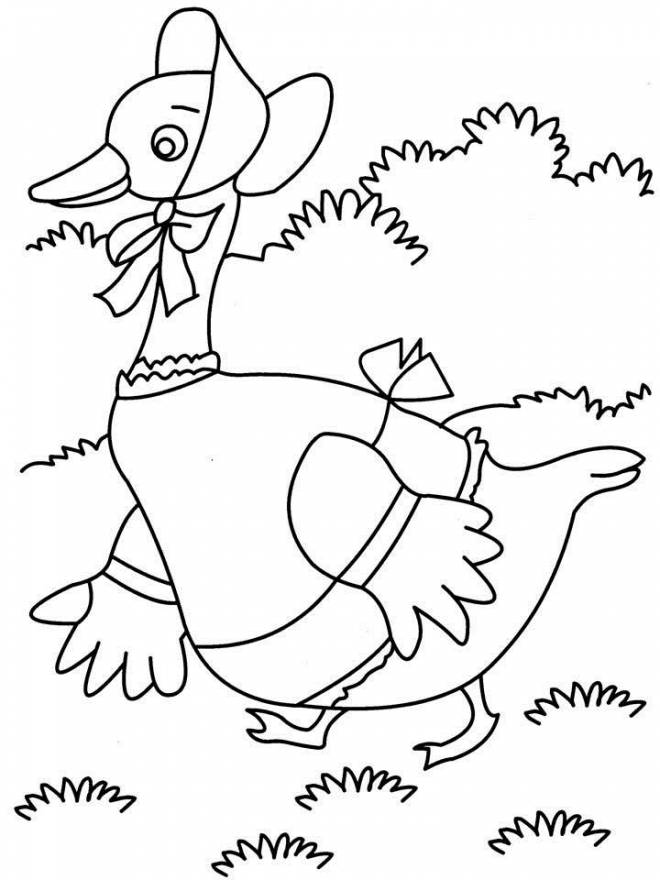 Free coloring and drawings A duck is walking Coloring page