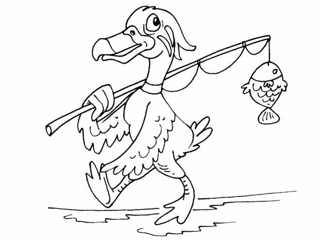 Free coloring and drawings Duck fishing a fish Coloring page
