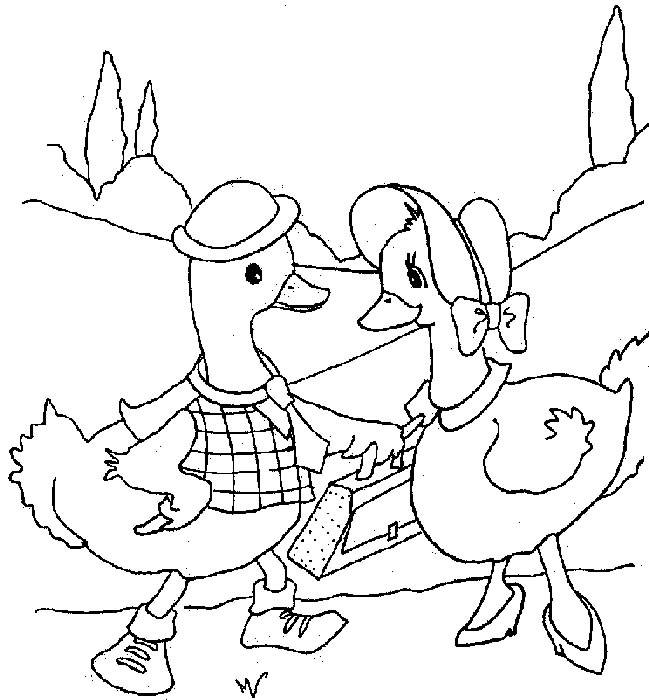 Free coloring and drawings Father and mother duck Coloring page