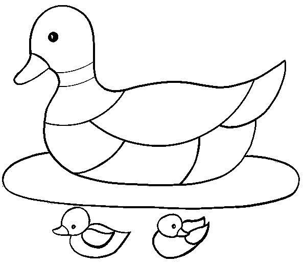 Free coloring and drawings Mother duck with her ducklings Coloring page