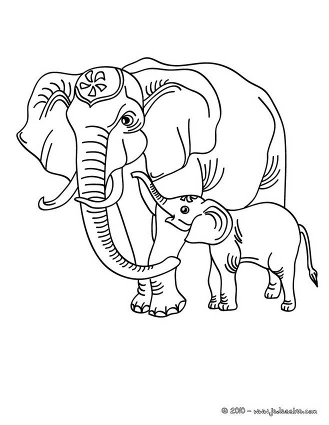 Free coloring and drawings Elephant and its cub Coloring page