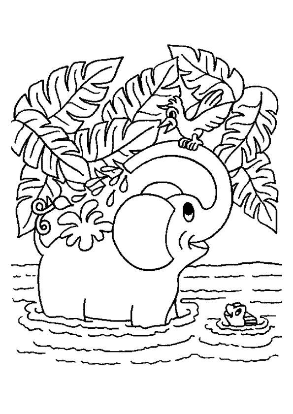 Free coloring and drawings Elephant playing in the water Coloring page