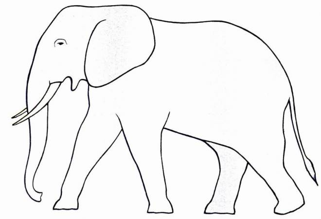 Free coloring and drawings Simple elephant Coloring page