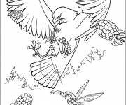 Coloring pages Hawk attacking