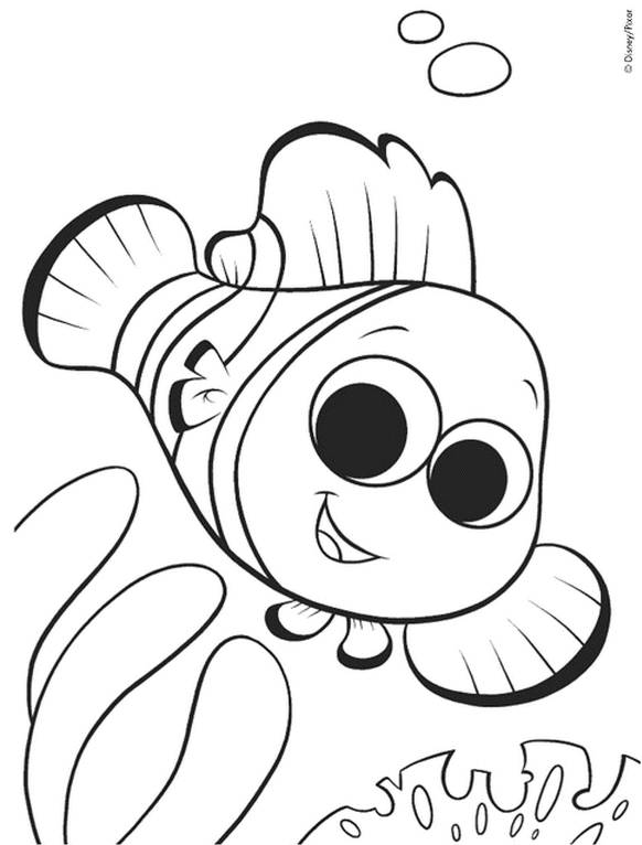 Free coloring and drawings Baby Fish Coloring page