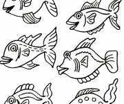Free coloring and drawings Exotic fish Coloring page