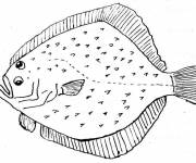 Coloring pages Four-eyed fish