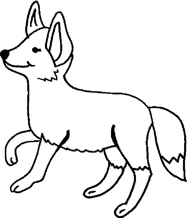 Free coloring and drawings Color fox Coloring page