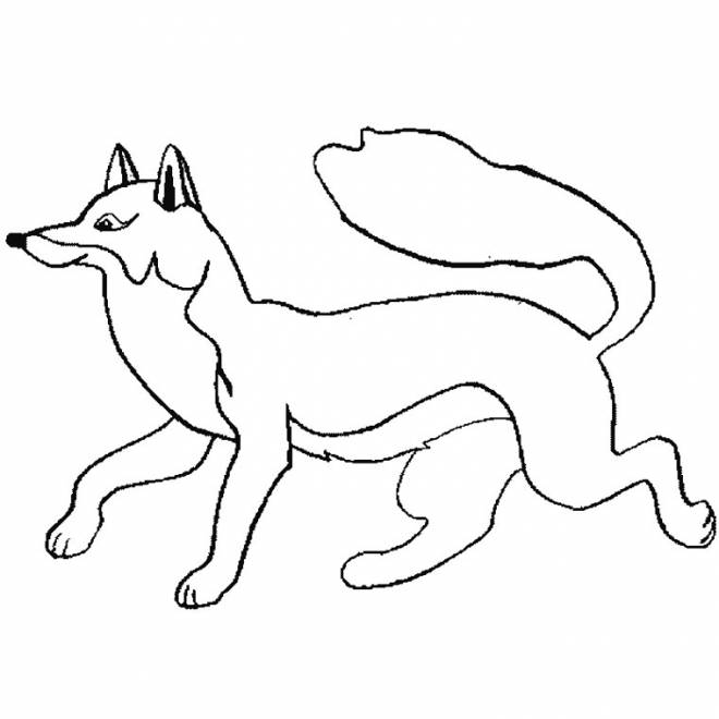 Free coloring and drawings Easy fox Coloring page