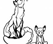 Coloring pages Fox and baby