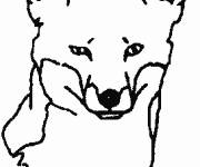 Coloring pages Fox head