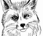 Coloring pages Fox head in black