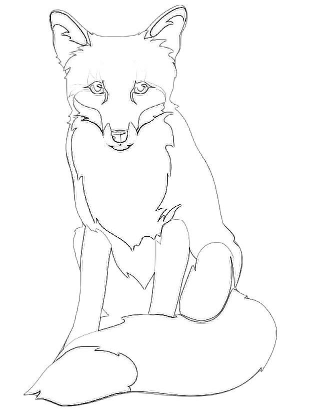 Free coloring and drawings Fox in pencil Coloring page