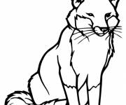 Coloring pages Vector fox