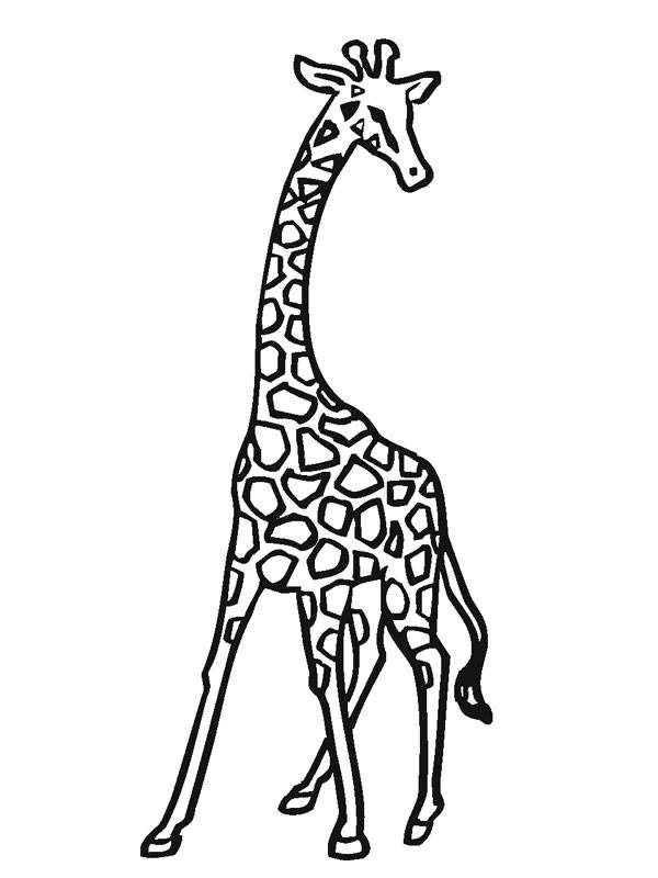 Free coloring and drawings A Giraffe in black Coloring page