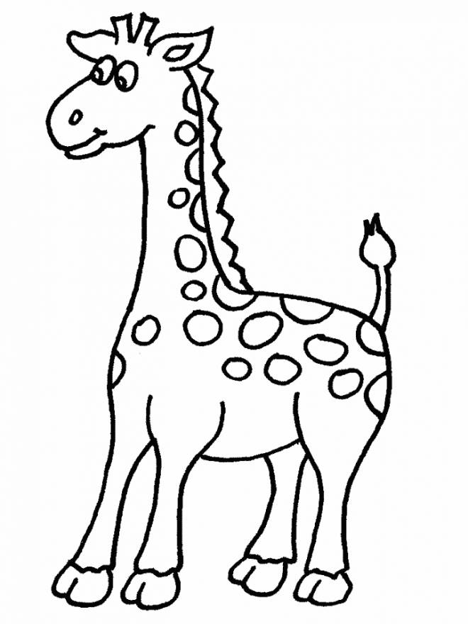 Free coloring and drawings A little Giraffe to color Coloring page