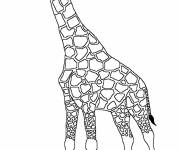 Coloring pages Black and white giraffe