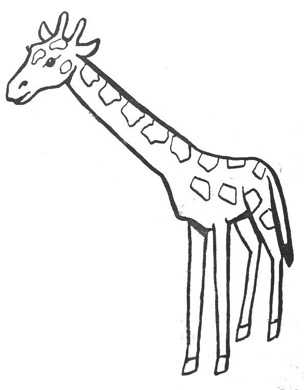 Free coloring and drawings Color giraffe Coloring page