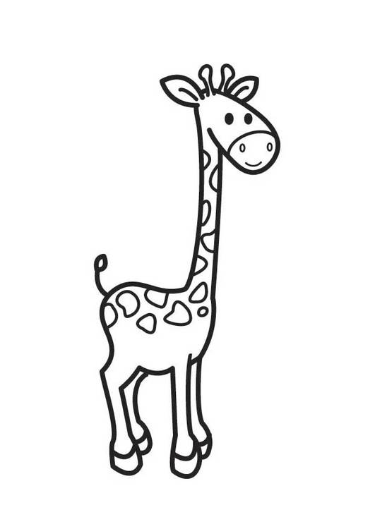 Free coloring and drawings Easy giraffe for kids Coloring page
