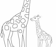 Free coloring and drawings Giraffe and its cub Coloring page