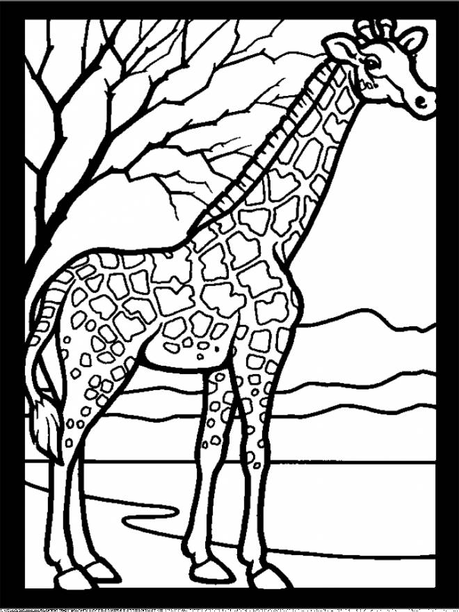Free coloring and drawings Giraffe and nature Coloring page