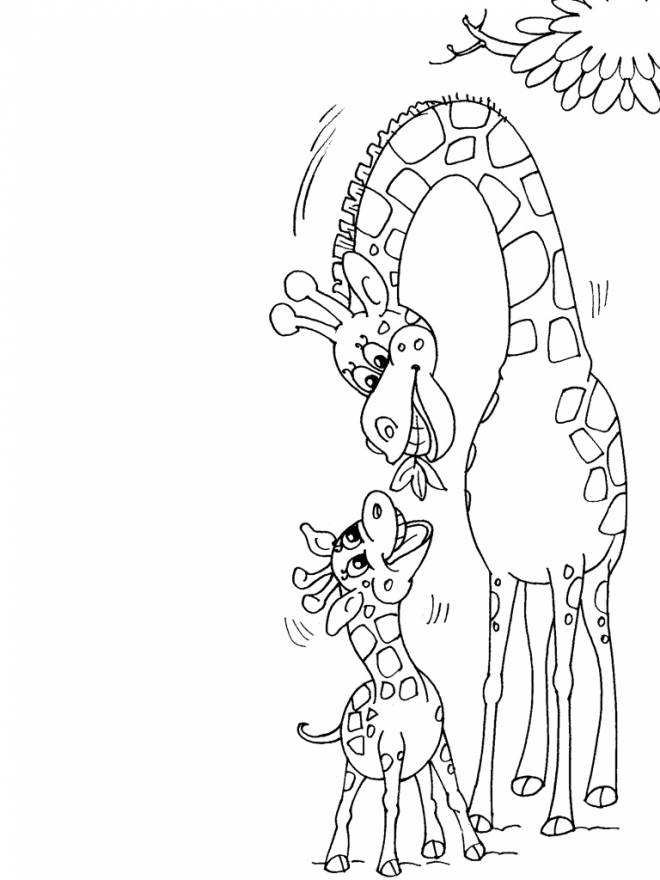 Free coloring and drawings Giraffe gives food to its young Coloring page