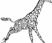 Coloring pages Giraffe jumping