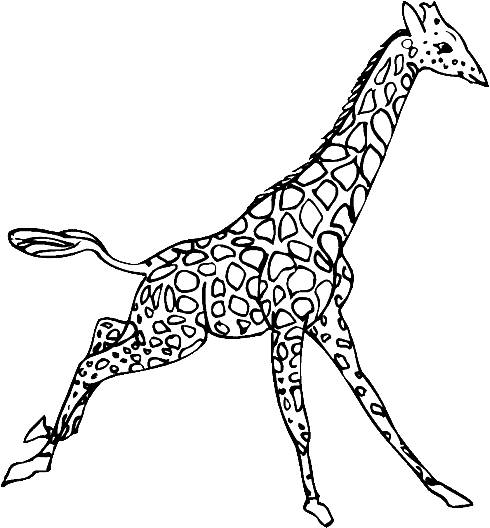 Free coloring and drawings Giraffe walks Coloring page