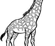 Coloring pages Giraffe with closed eyes
