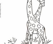 Coloring pages Giraffes in Africa
