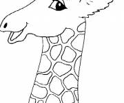 Coloring pages Head of beautiful giraffe