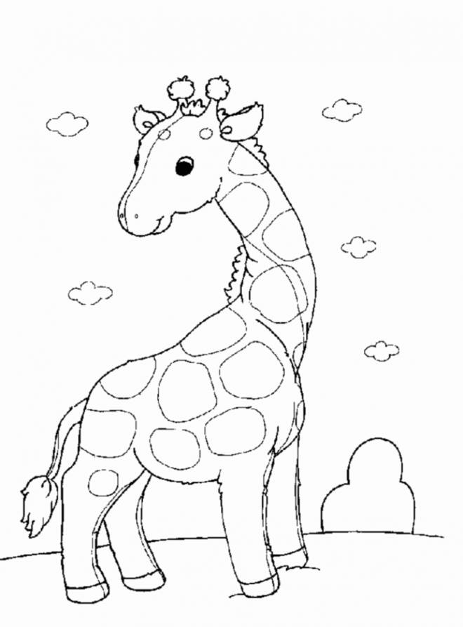 Free coloring and drawings Little Giraffe standing Coloring page