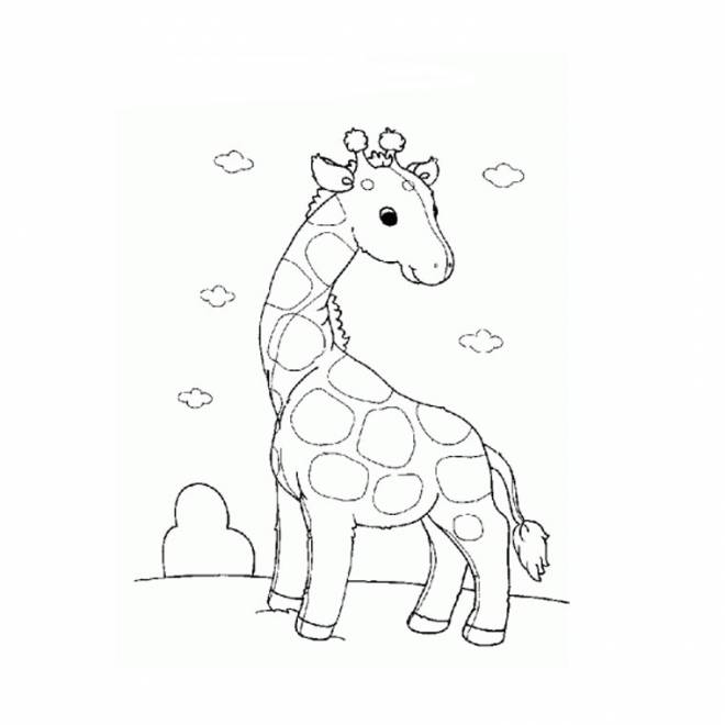 Free coloring and drawings Lovable giraffe Coloring page