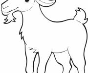 Free coloring and drawings Easy goat Coloring page