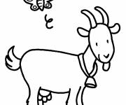 Free coloring and drawings Goat and butterfly Coloring page